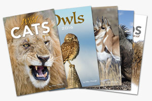2016 Nature and Wildlife Calendars