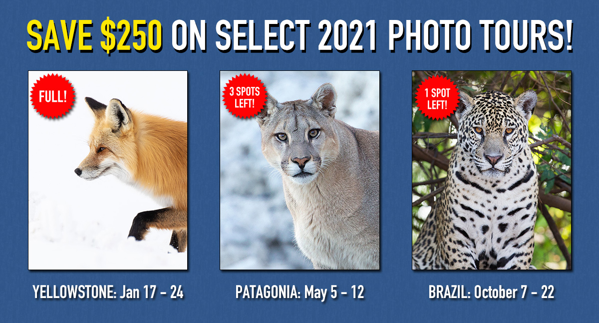 Save $250 on 2021 Tours