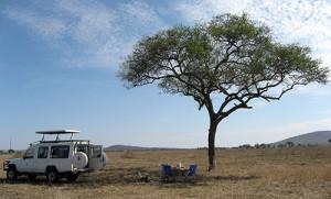 Tanzania safari with Roy Safaris