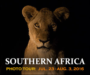 Southern Africa Photo Tour