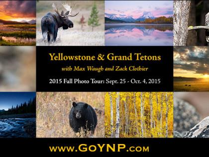 2015 Fall Yellowstone & Grand Teton Extended Photo Tour: 4 Spots Left
