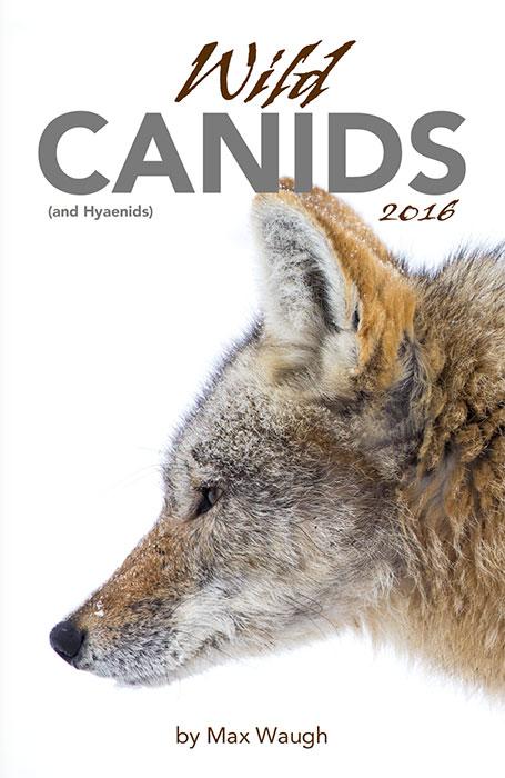 2016 Wild Canids calendar