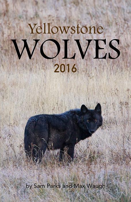 2016 Yellowstone Wolves calendar