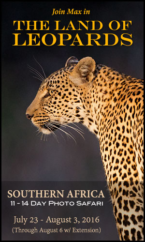 2016 Southern Africa photo safari with Max Waugh