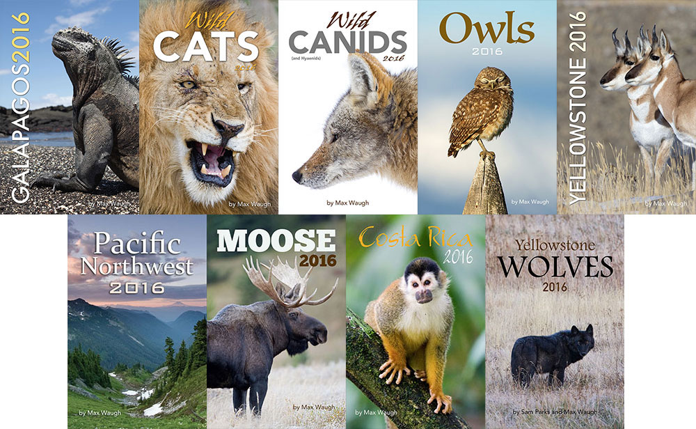 2016 Nature Calendars