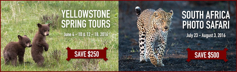 2016 Photo Tour discounts