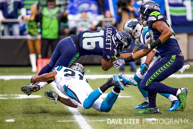 Seahawks and Panthers by Dave Sizer