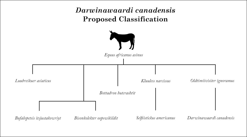 Darwinawaardi canadensis classification chart