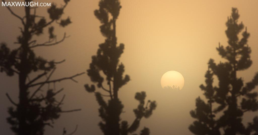 Sunrise in Hayden Valley
