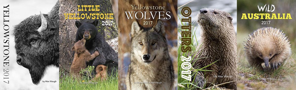 New 2017 Calendar Themes
