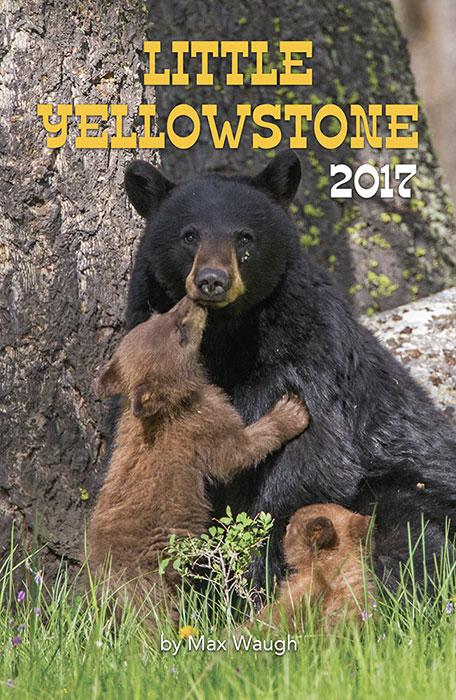 2017 Little Yellowstone calendar