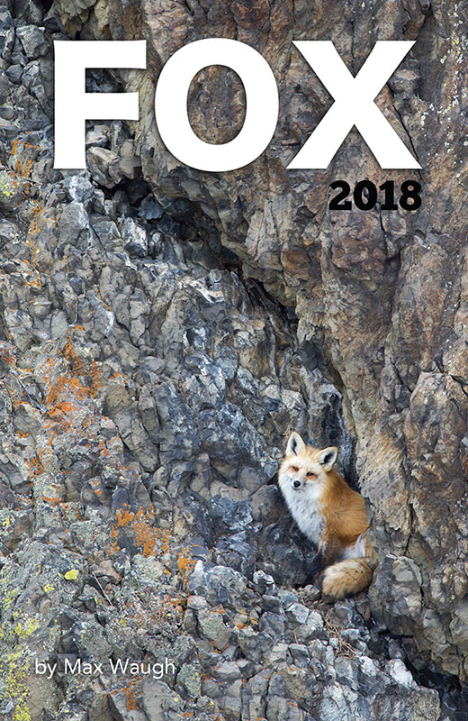 2018 red fox calendar cover