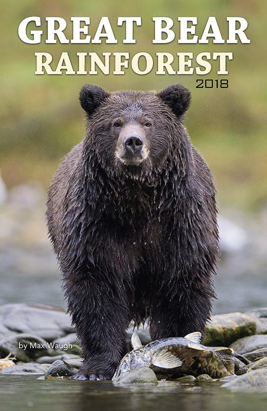 Great Bear Rainforest calendar cover