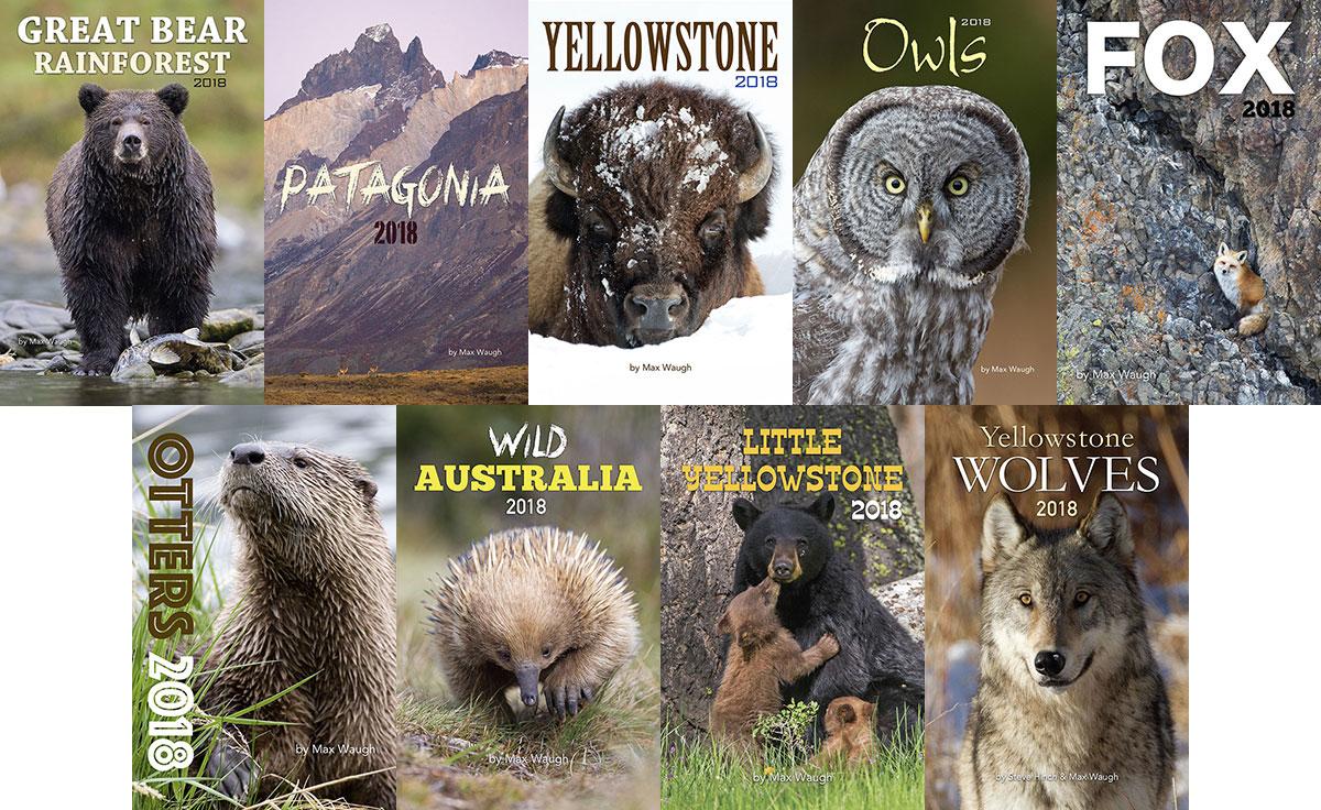 2018 nature and wildlife calendars