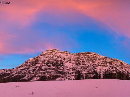 Photos Added: Yellowstone Winter 2014