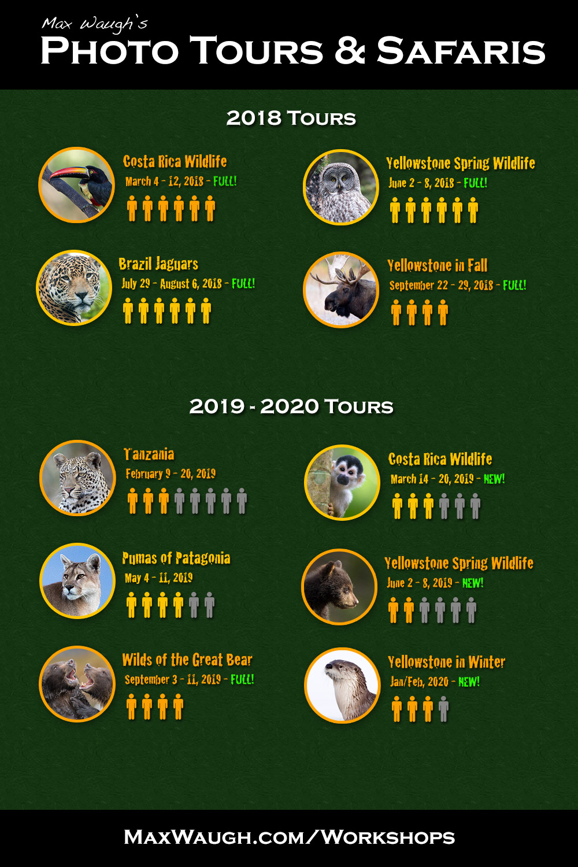 2018 - 2020 Photo Tours