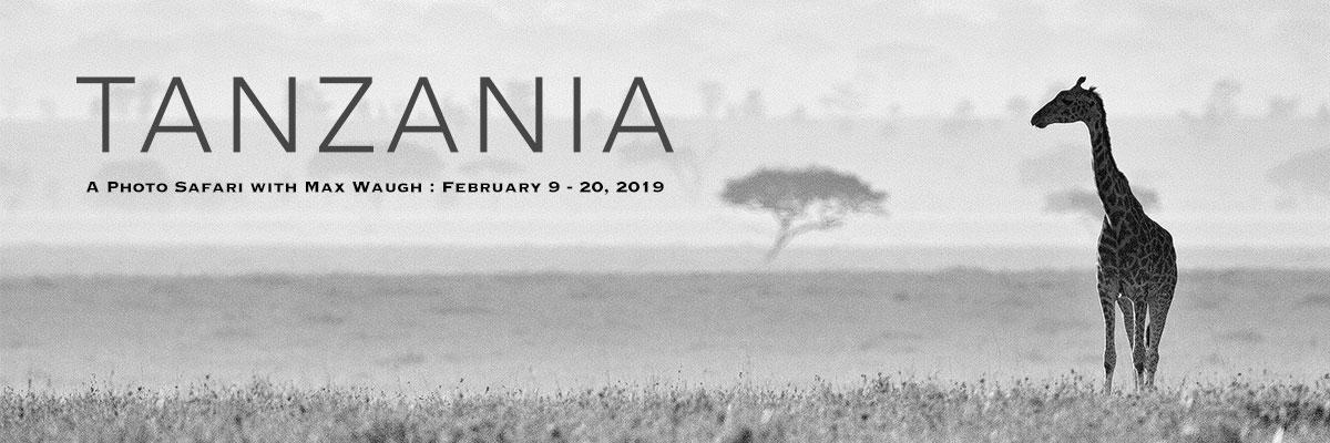 2019 Tanzania Photo Safari