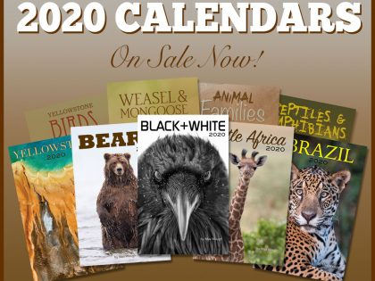 2020 Nature and Wildlife Calendars are Now Available!
