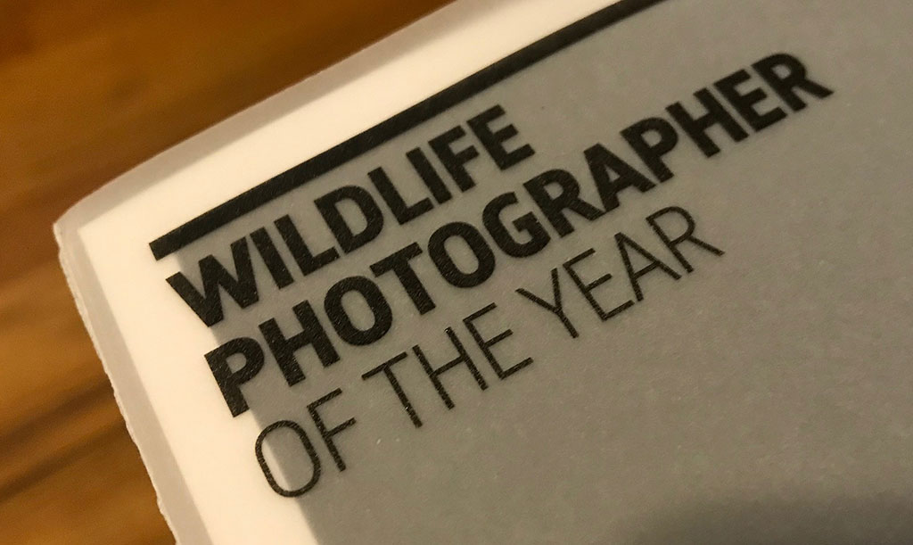Wildlife Photographer of the Year Invitation