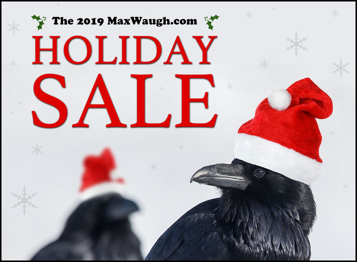 2019 MaxWaugh.com Holiday Sale