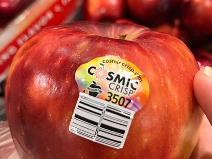 Produce Review: Cosmic Crisp Apple