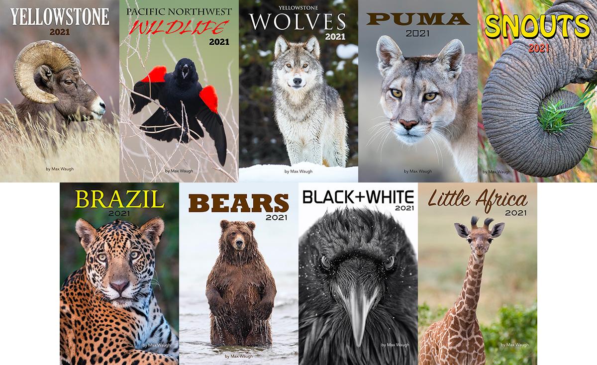 2021 Nature and Wildlife Calendars