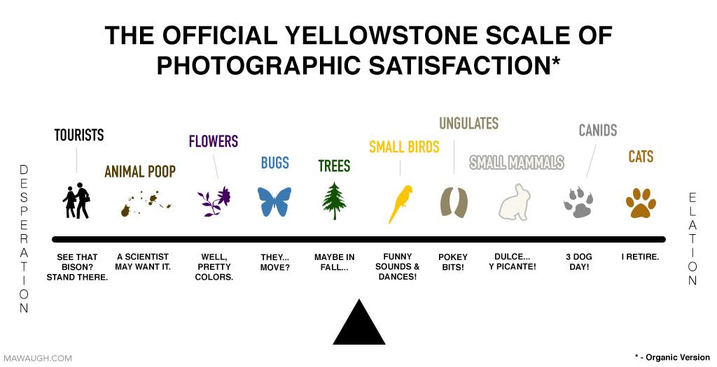 Yellowstone Scale of Photographic Satisfaction
