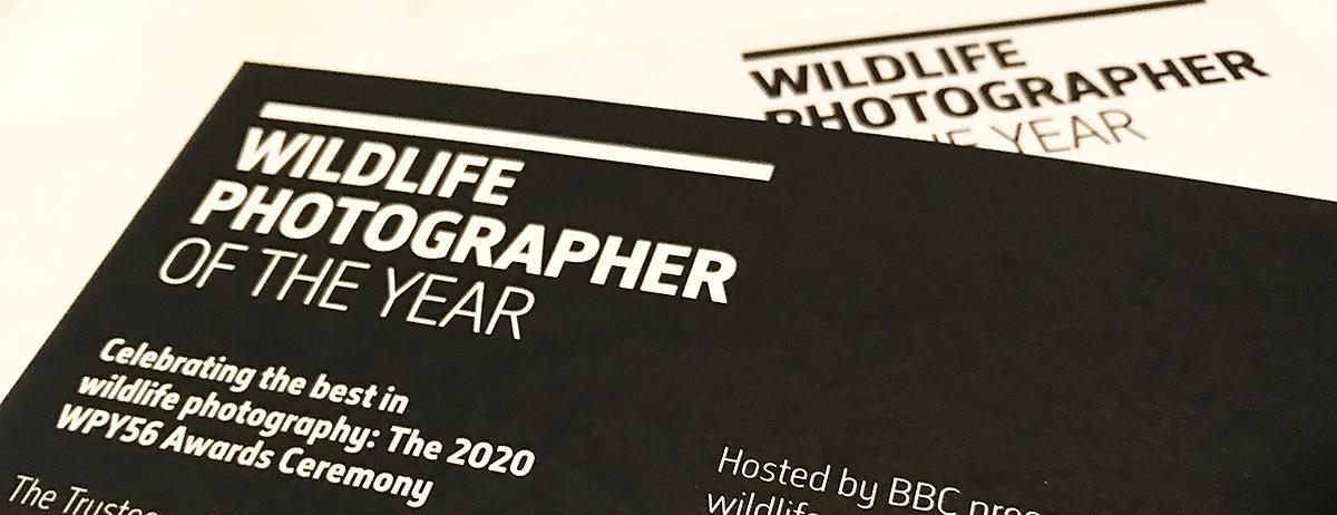 Wildlife Photographer of the Year Invitation