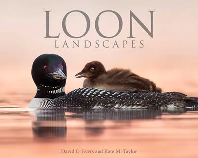 Loon Landscapes book
