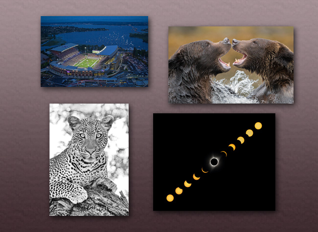 2020 Holiday Sale Photo Prints