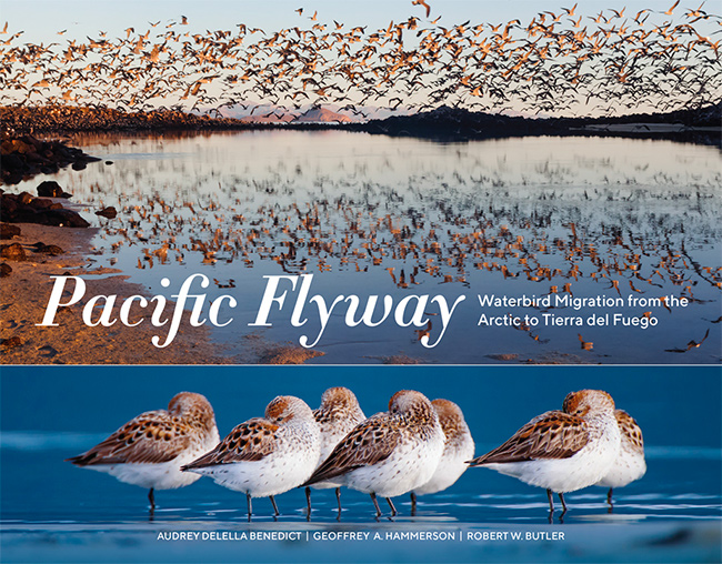 Pacific Flyway book