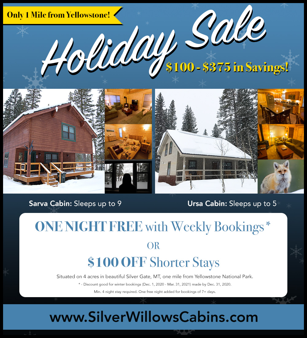 Silver Willows Cabins winter sale