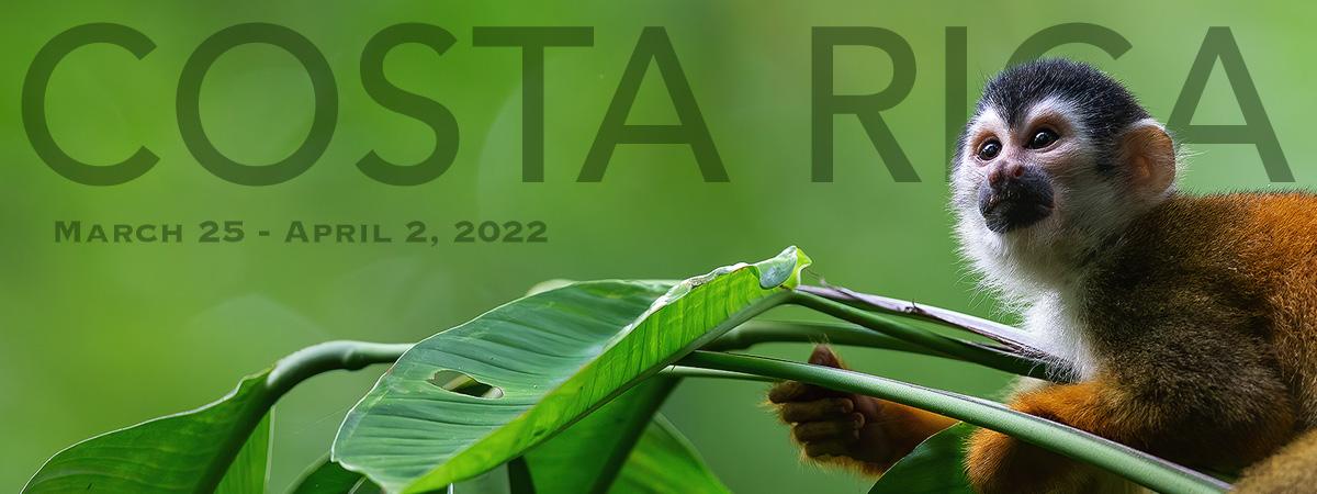 Costa Rica 2022 Photo Tour